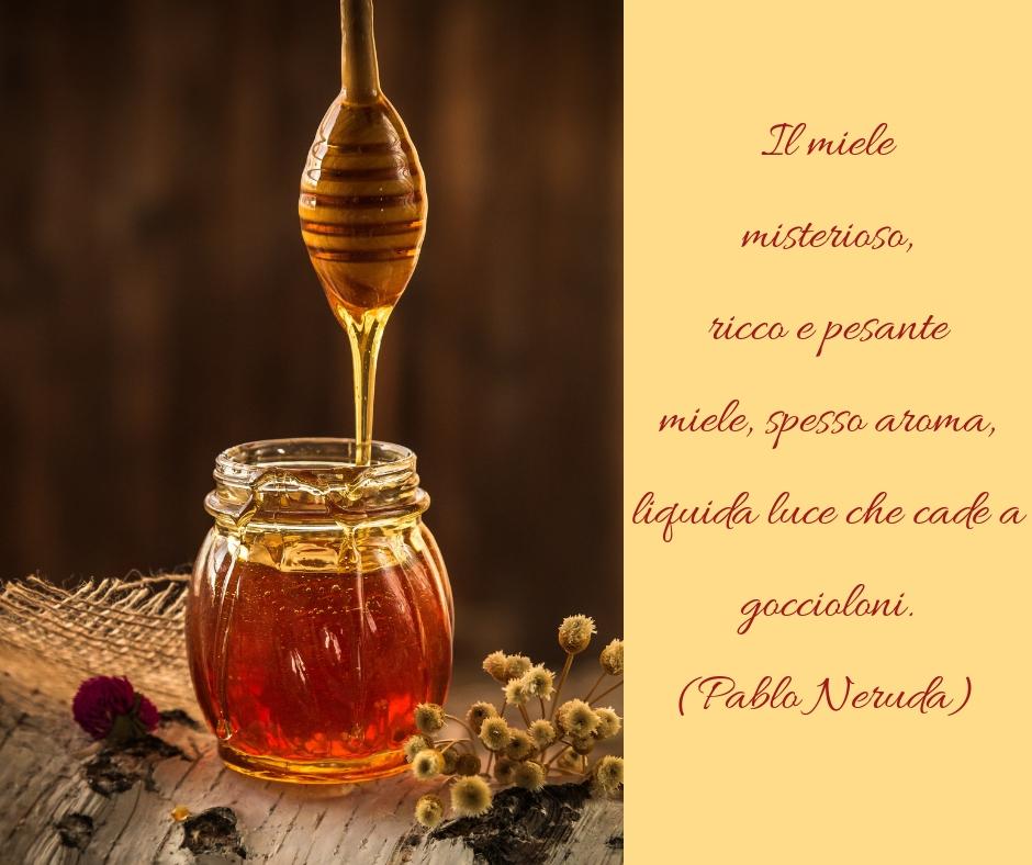 Miele Poesia Pablo Neruda